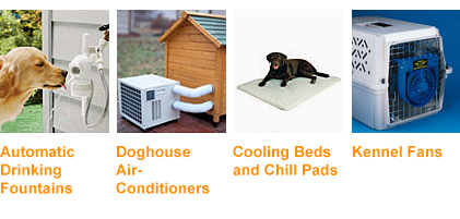 Dog Cooling Products for summer