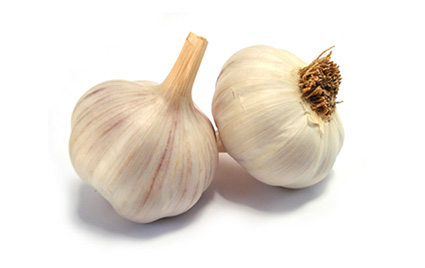 spice-garlic