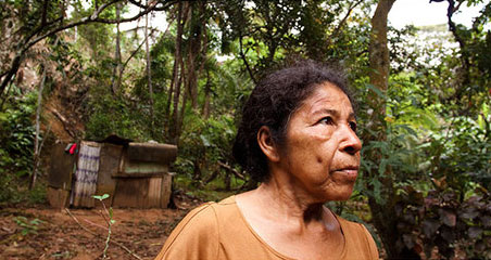 marta-ortega-rainforest-amazon-deforestation-native-tribe