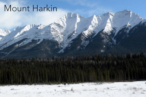 mount-harkin-canada-ukrainian-internment-national-park-commisioner