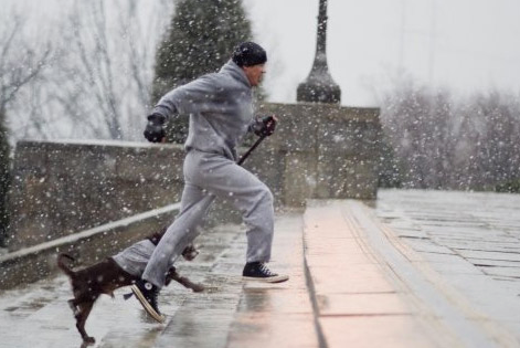 sylvester-stallone-run-up-steps-determination-with-dog-never-give-up