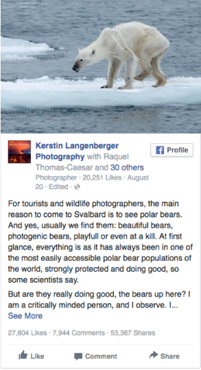 polarbear-facebook-post-starving-photo-svalbard-global-warming